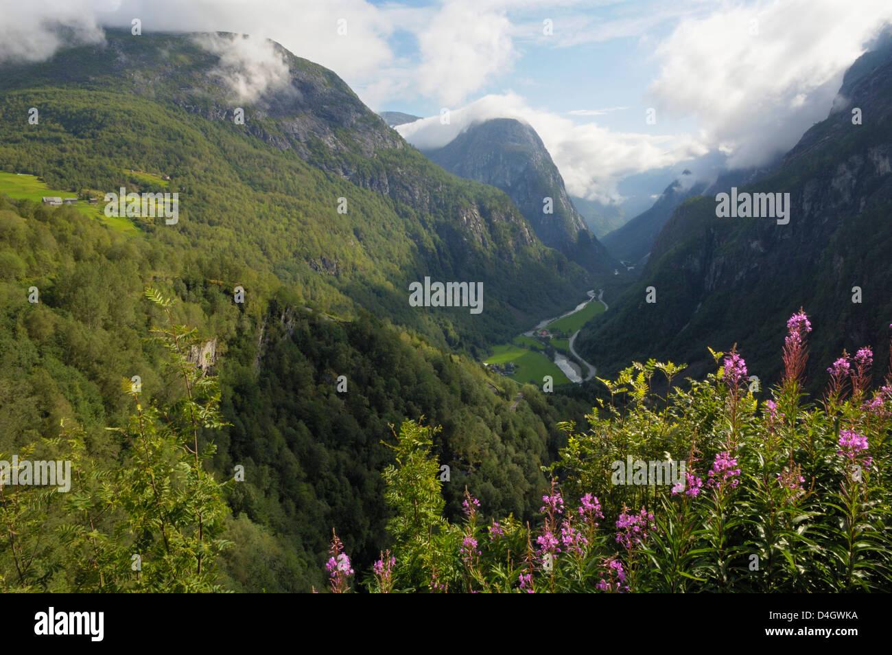 View from Stalheim, Naeroydalen valley, Norway, Scandinavia - Stock Image