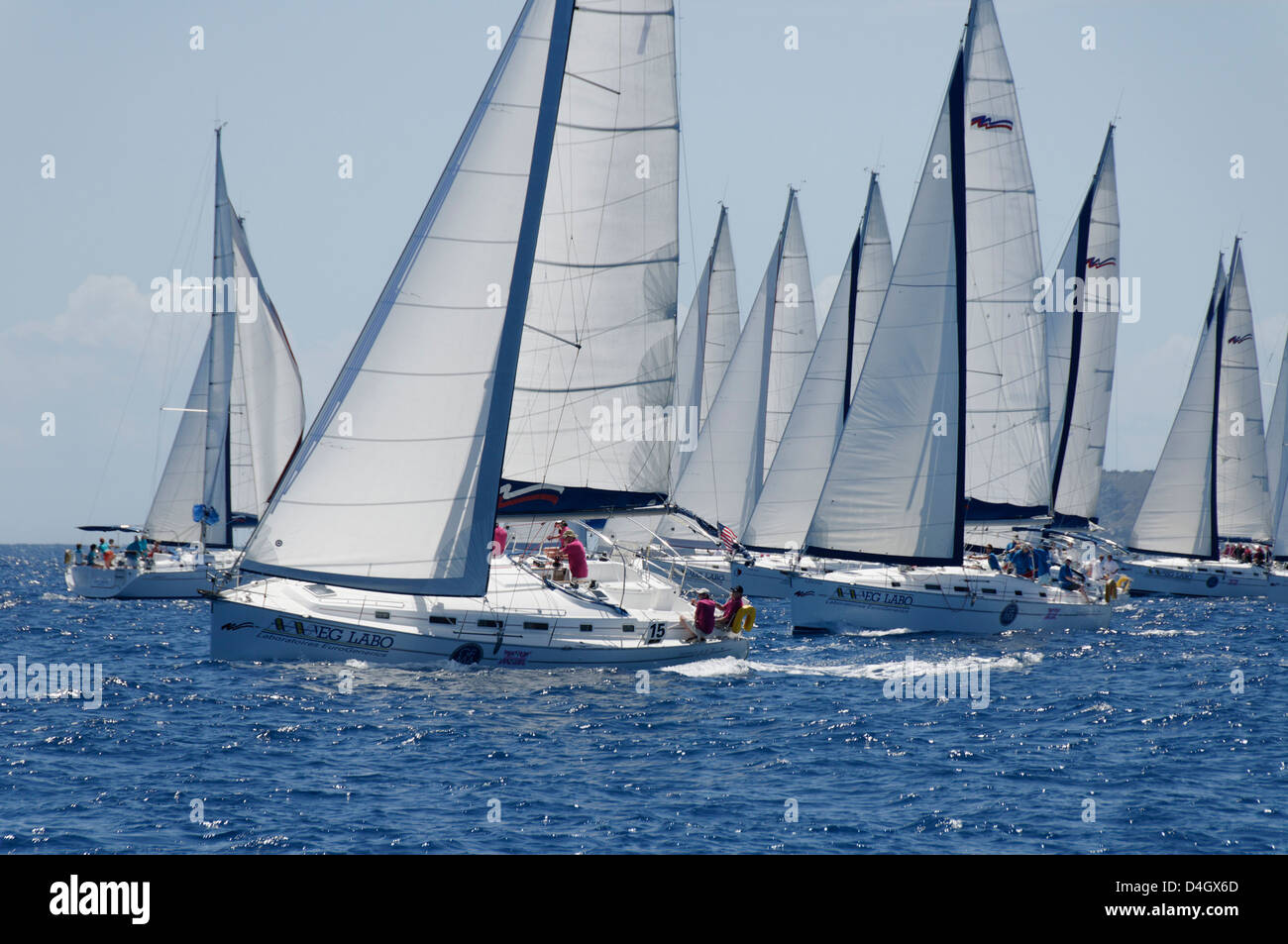Sailboat regattas. British Virgin Islands, West Indies, Caribbean - Stock Image