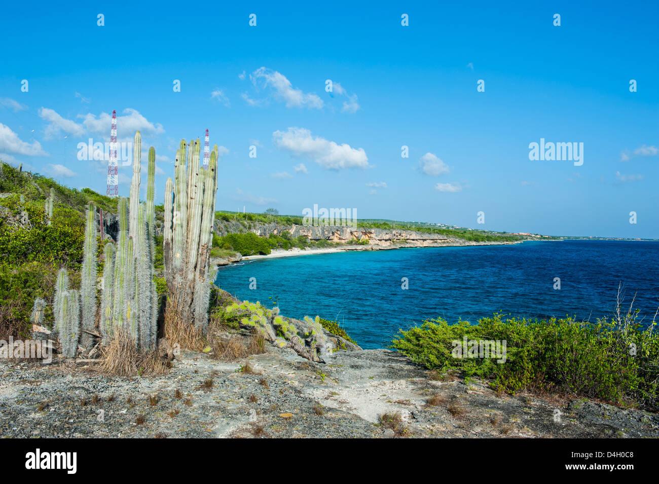 Coast line in the Washington-Slagbaai National Park, Bonaire, ABC Islands, Netherlands Antilles, Caribbean - Stock Image