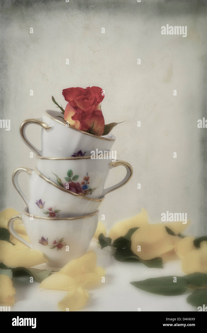 four vintage cups with a rose - Stock Image