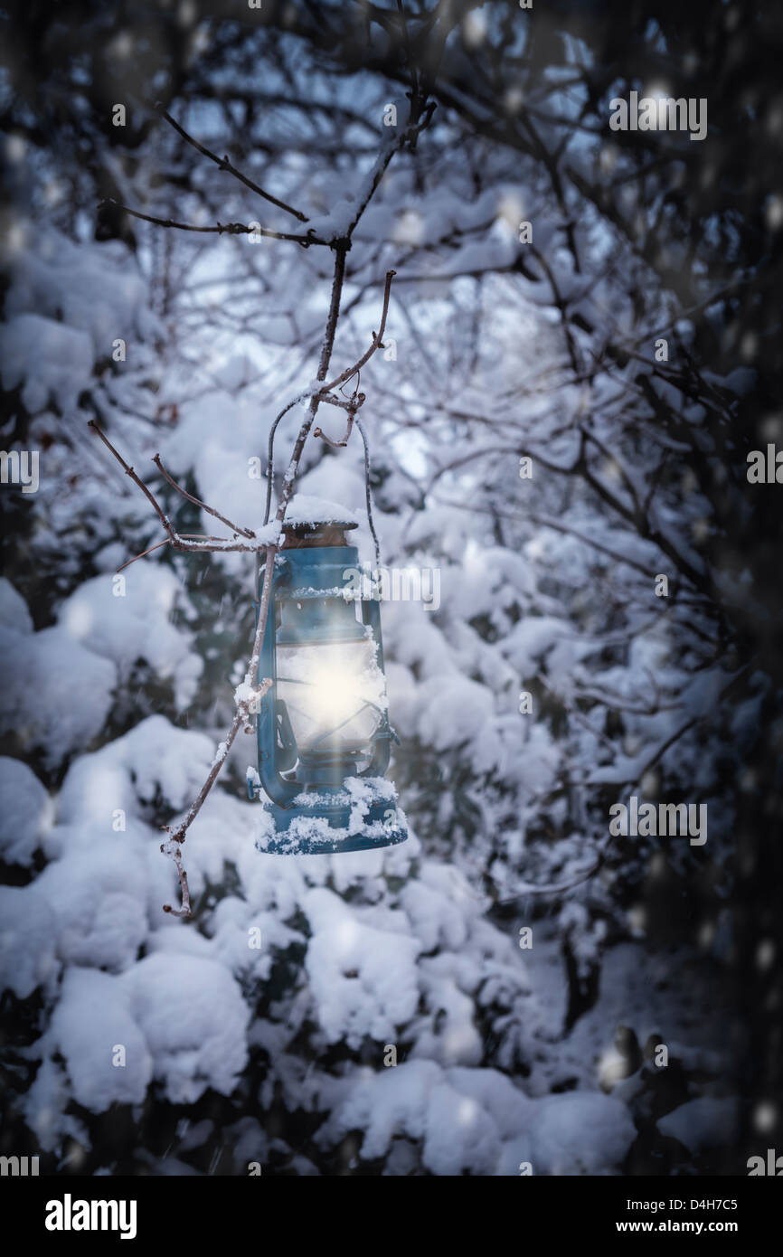 a lantern hanging on a snow-covered tree at night - Stock Image