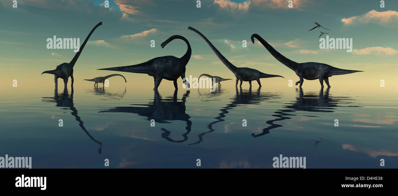 Sauropod Bay Stock Photo