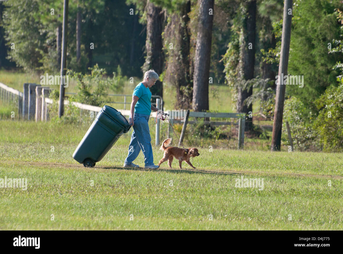 Rural housewife does double duty, walking the dog while bringing in the garbage can. - Stock Image