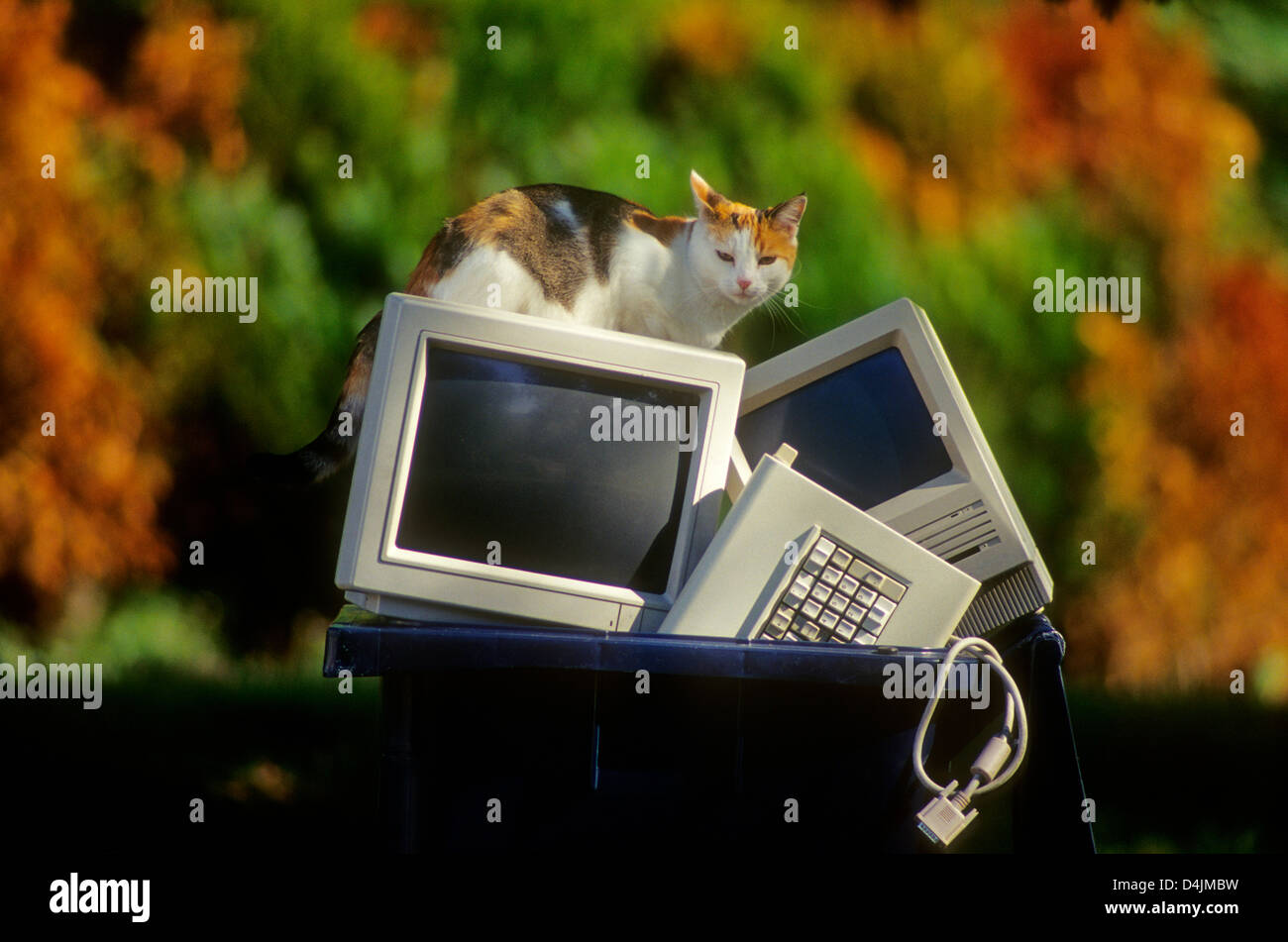 Old computer screen thrown in the trash can bin for recycling. - Stock Image