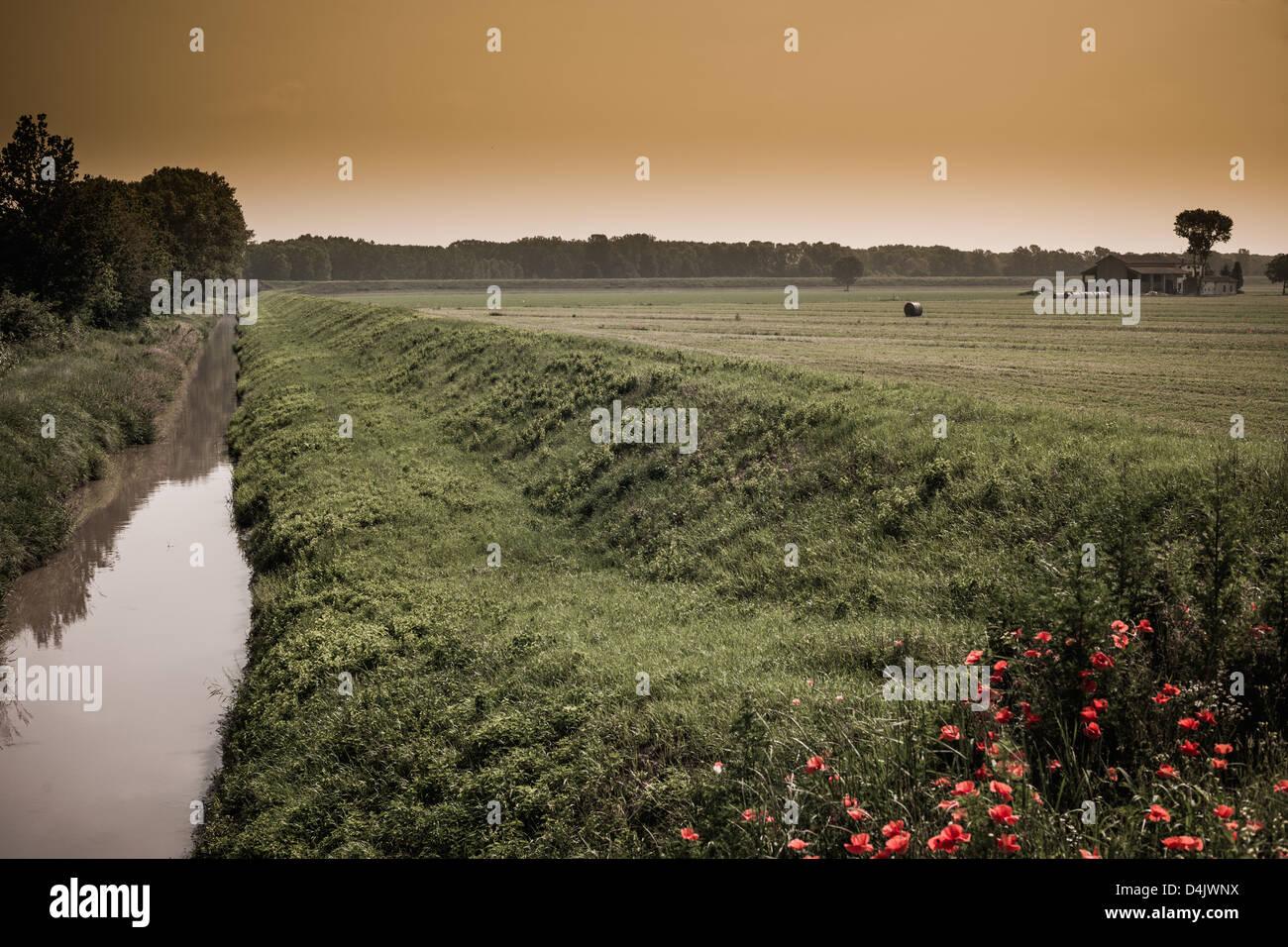 Still creek in rural landscape - Stock Image