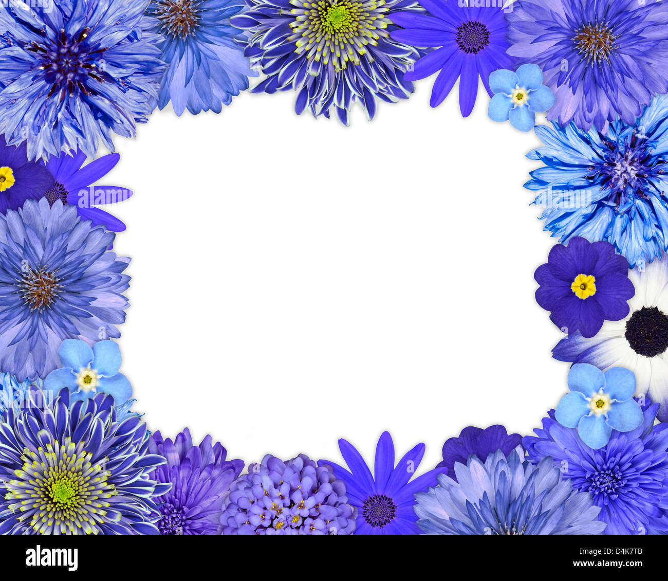 Flower Frame With Blue Purple Flowers Isolated On White Background