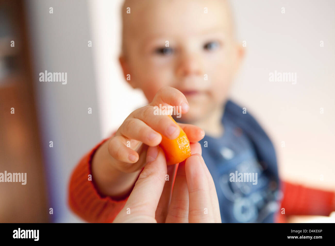 Mother hand baby boy piece of fruit - Stock Image
