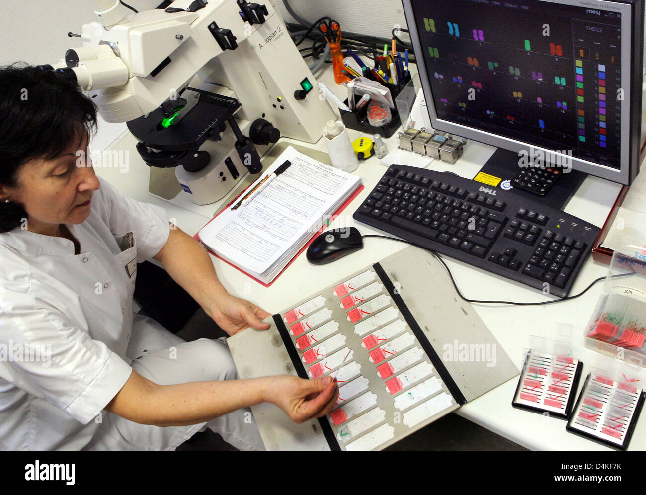 (file) - The file picture dated 14 November 2008 shows medical technical assistant Evelin Hennig as she examines - Stock Image