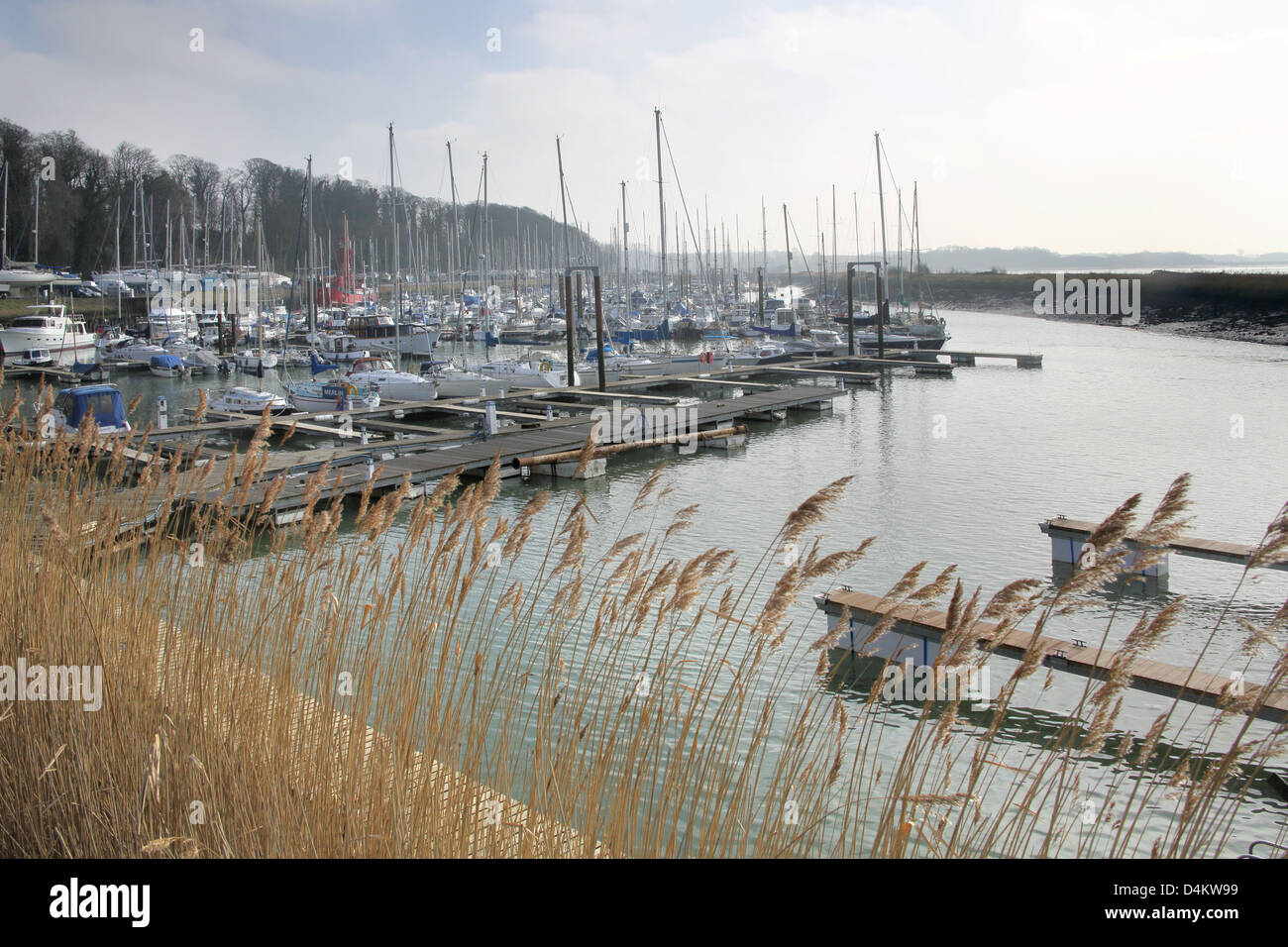 levington marina on the suffolk coast Stock Photo: 54526677 - Alamy