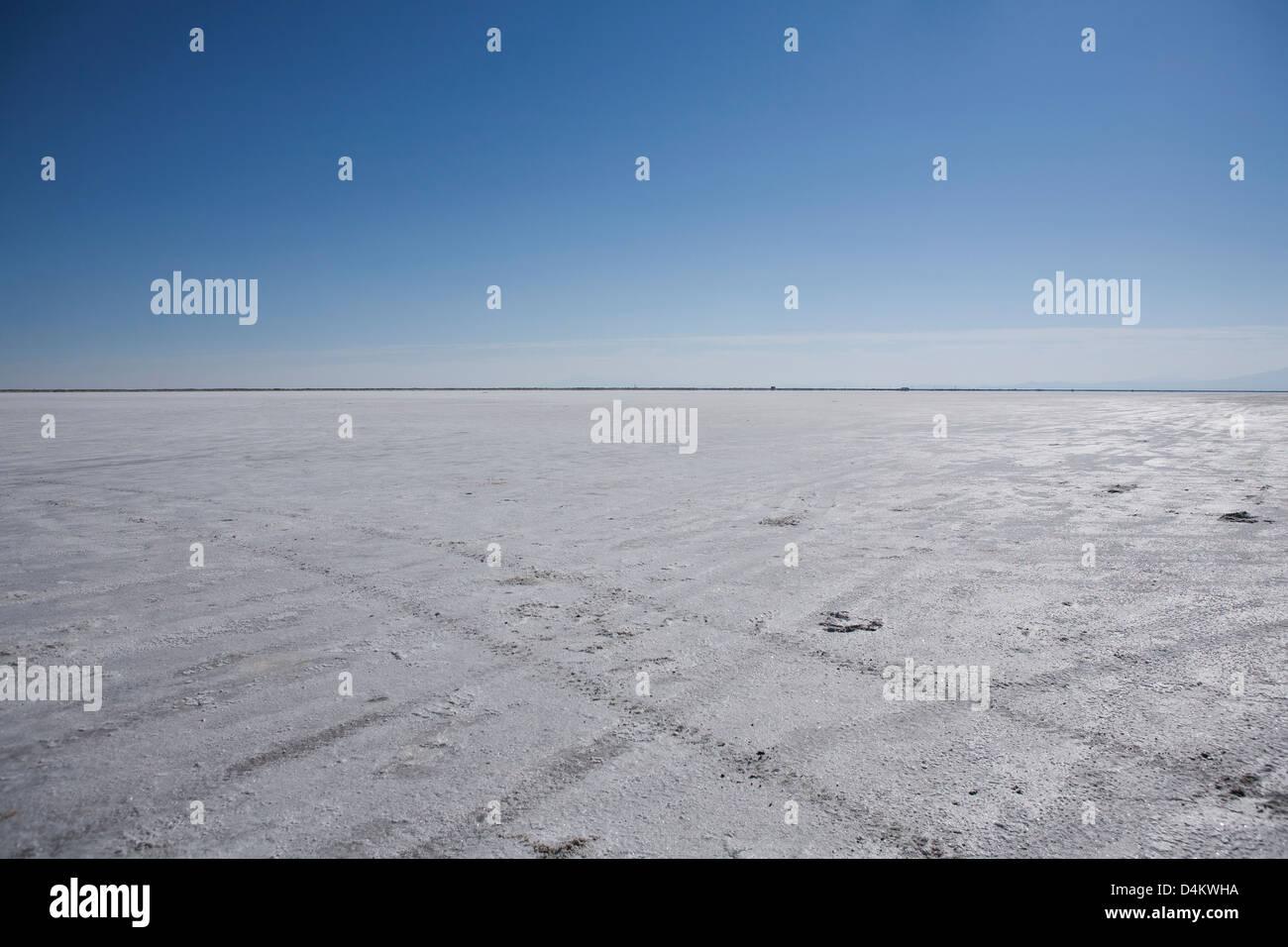 Tire tracks in desert landscape - Stock Image