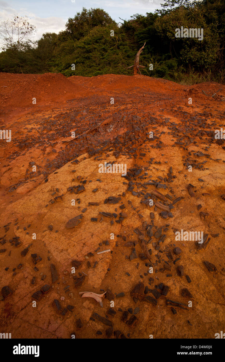 Pieces of coal, on the surface of the red soil, from ancient settlements in Sarigua national park, Herrera province, - Stock Image