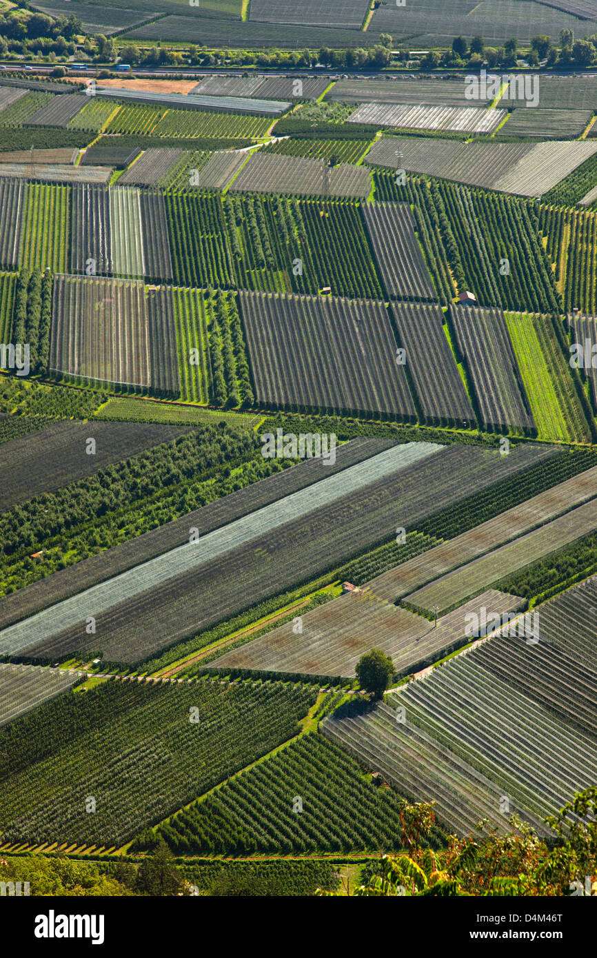 Aerial view of crop fields - Stock Image