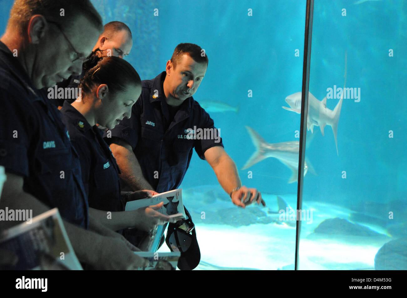 Gulf Regional Fisheries Training Stock Photo