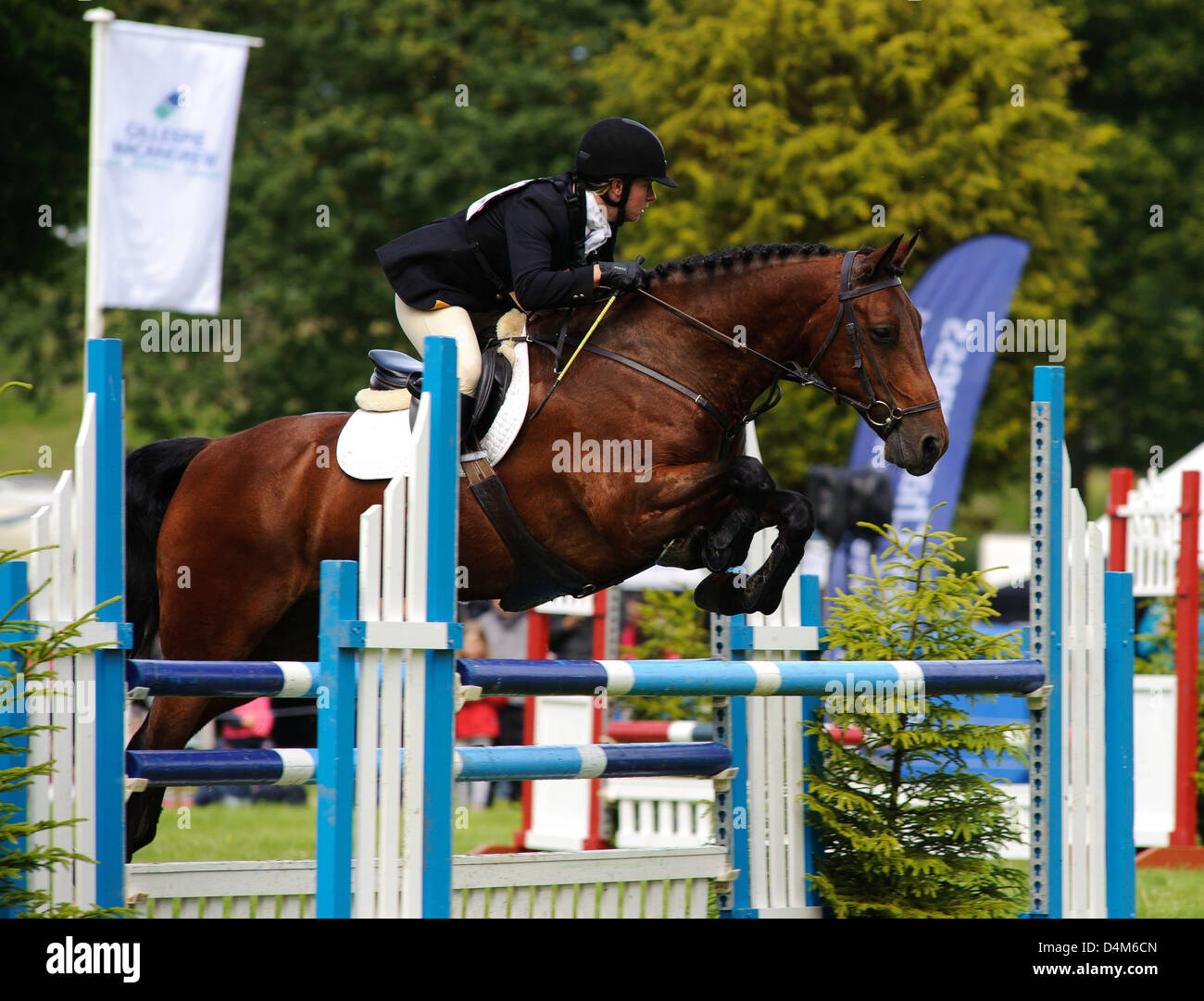 Ruth Foster in action, Gillespie Macandrew Hopetoun House Horse Trials - Stock Image