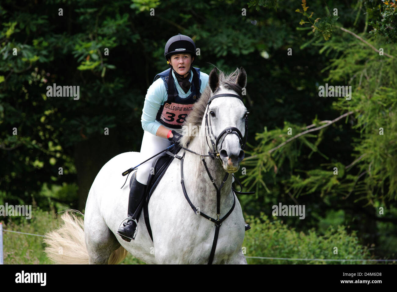 Cross Country action, Gillespie Macandrew Hopetoun House Horse Trials - Stock Image