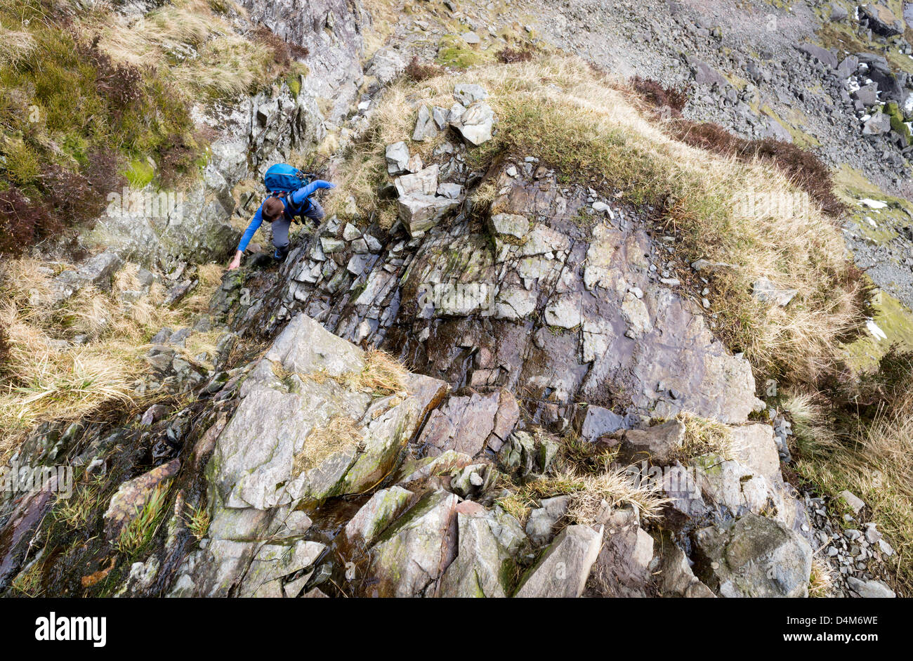 A hiker ascending Jack's Rake on Pavey Ark in the Lake District. - Stock Image