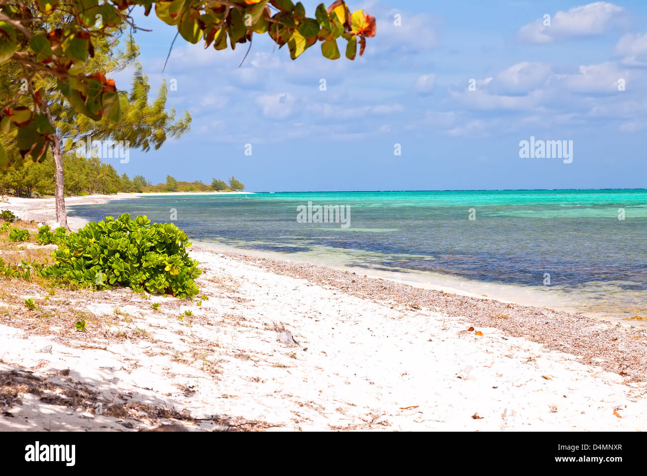Seven Mile Beach on Grand Cayman, Cayman Islands - Stock Image