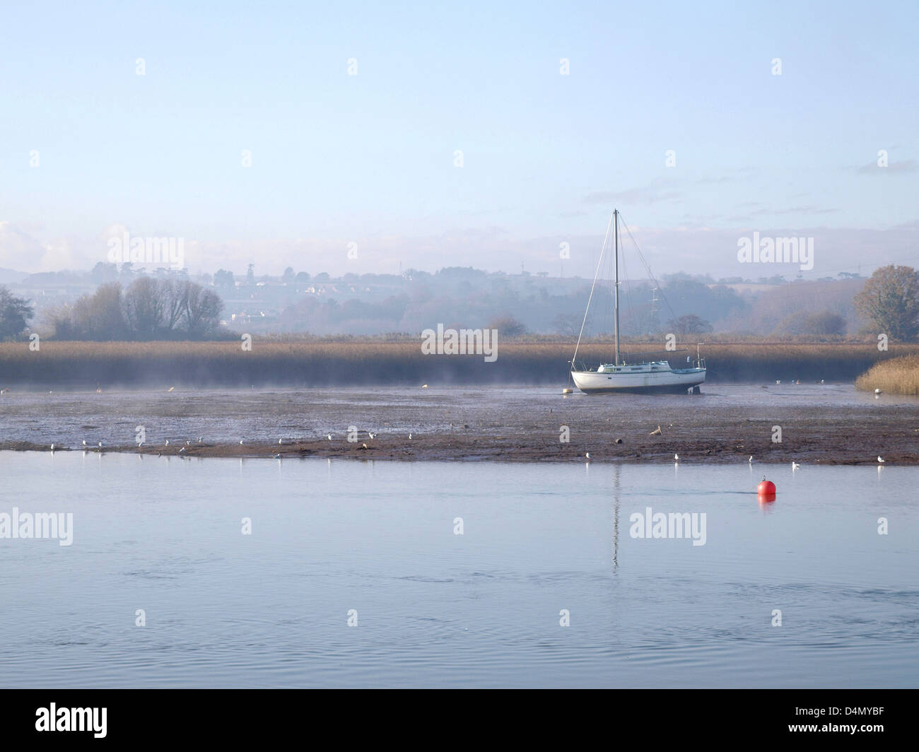 View of river Exe at Topsham - Stock Image