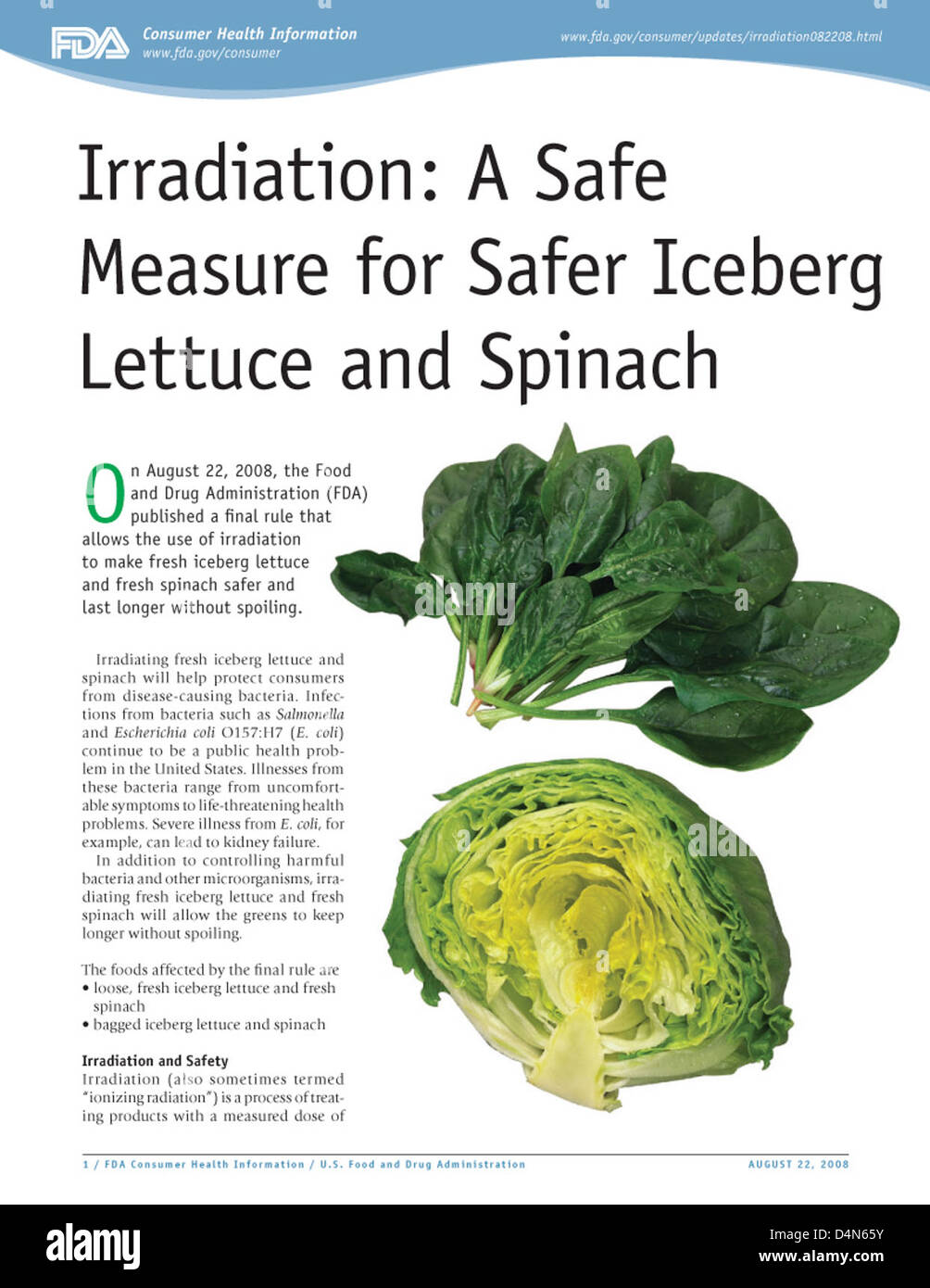 Irradiation: A Safe Measure for Safer Iceberg Lettuce and Spinach - Stock Image