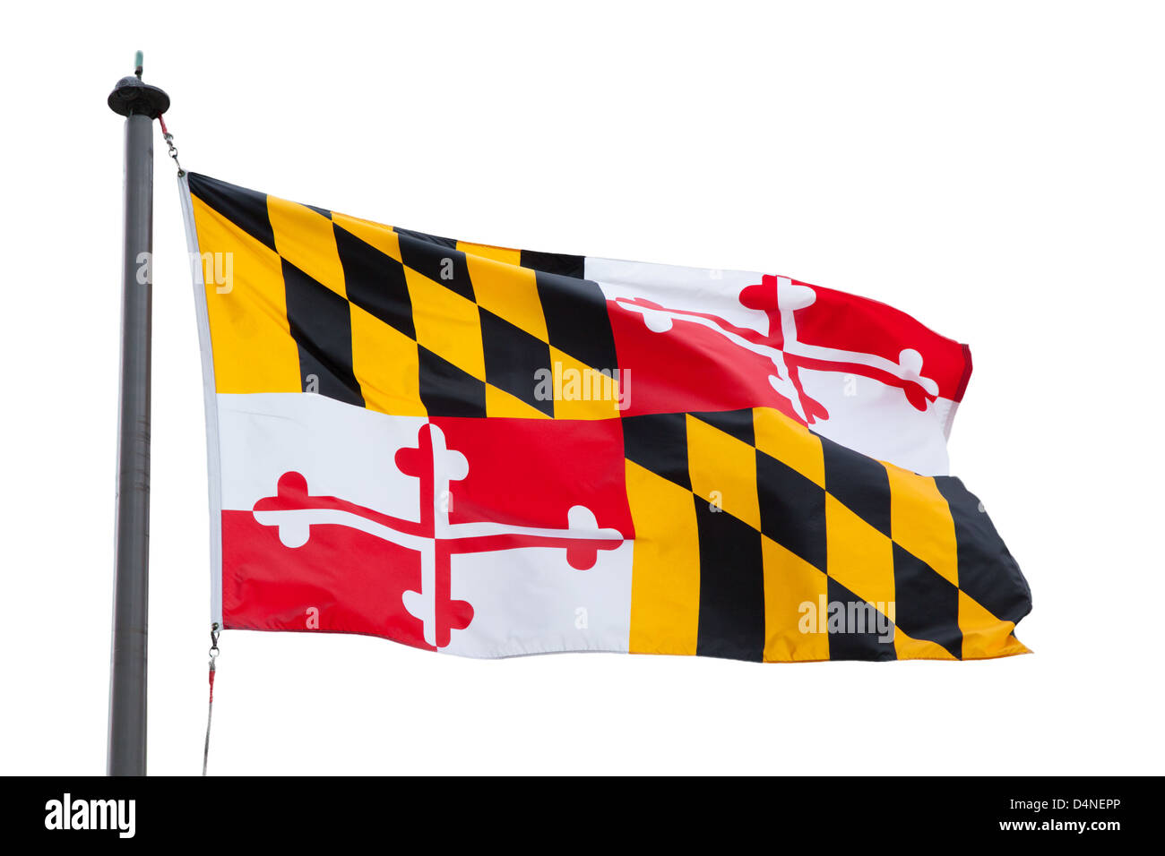 Flag of Maryland, United States, using arms of Cecilius Calvert, 2nd Baron Baltimore, only state flag based on English - Stock Image