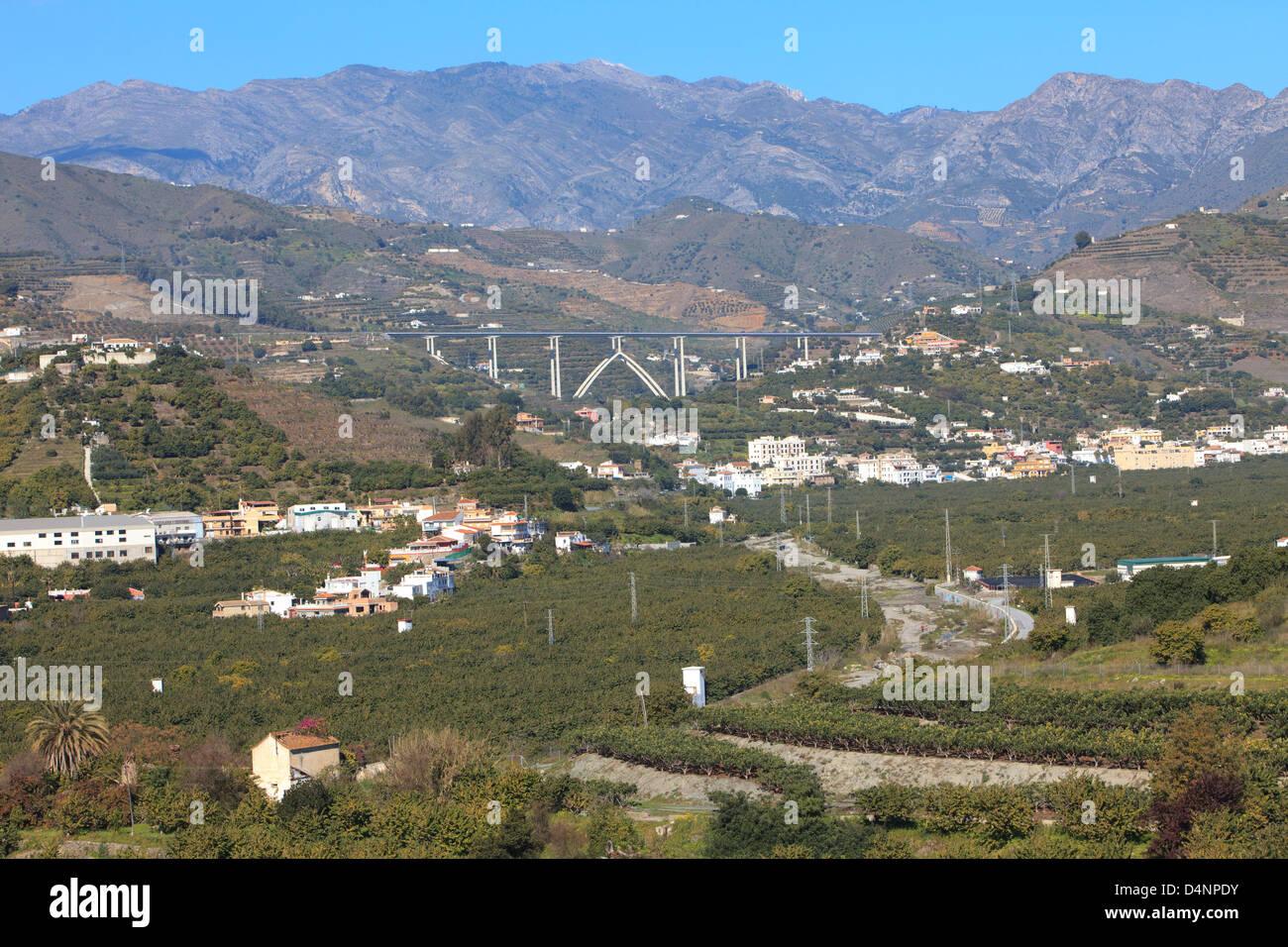 A valley with fruit trees in Almuñécar, Spain - Stock Image