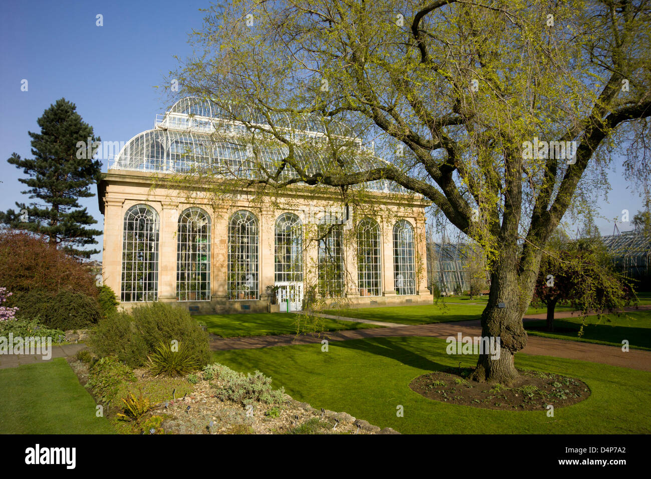 the palm house royal botanic garden - Stock Image