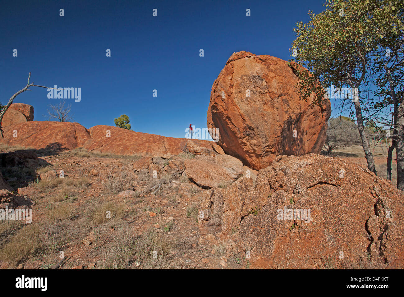 Gigantic granite boulder and slabs of rock - with man a tiny figure beside it - at Currawinya National Park, outback - Stock Image