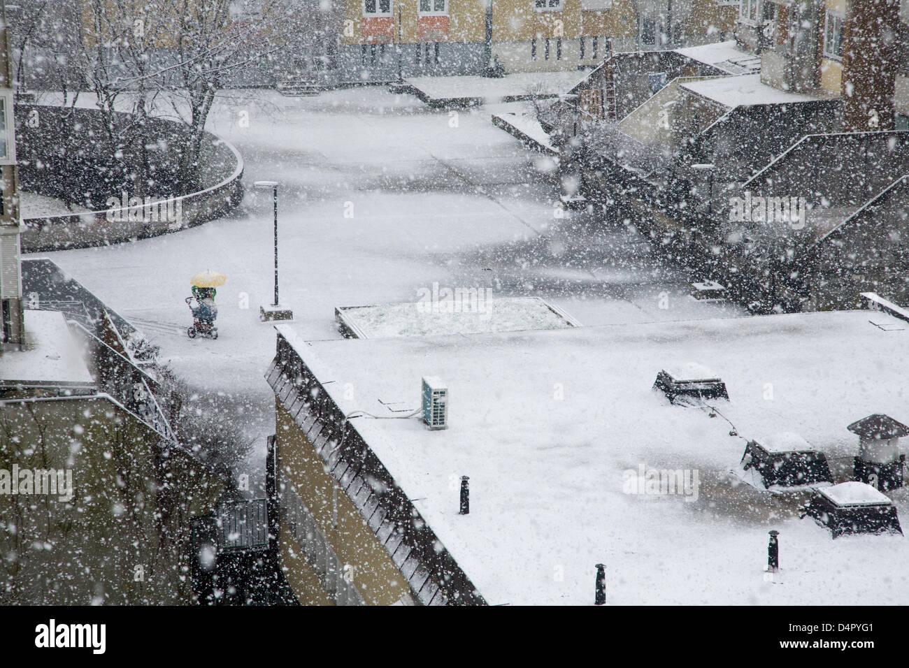 On 18th March 2013, just when Spring should be showing its face, another heavy snowfall comes in a suburb of Ljubljana, - Stock Image