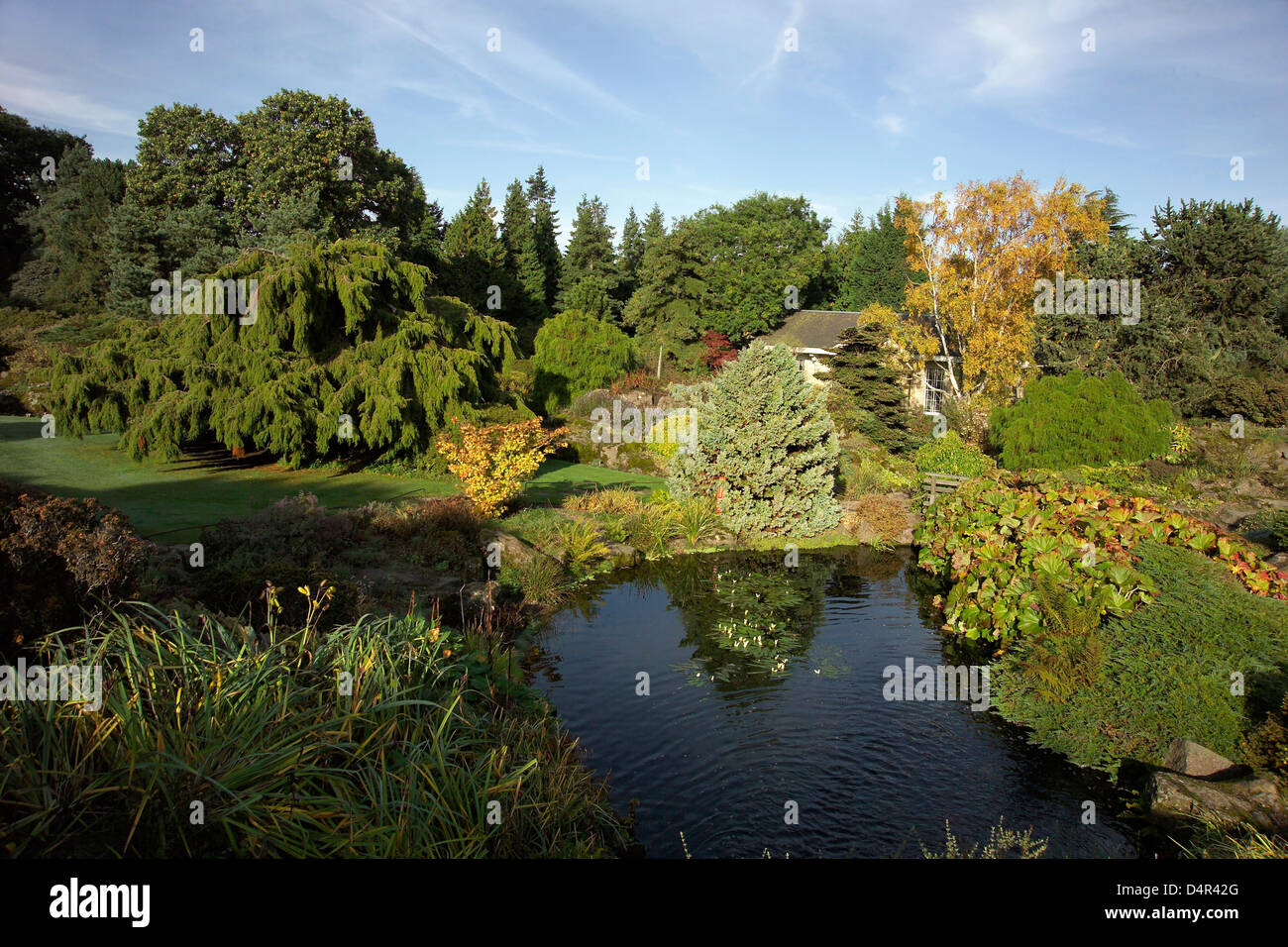 royal botanic garden - Stock Image
