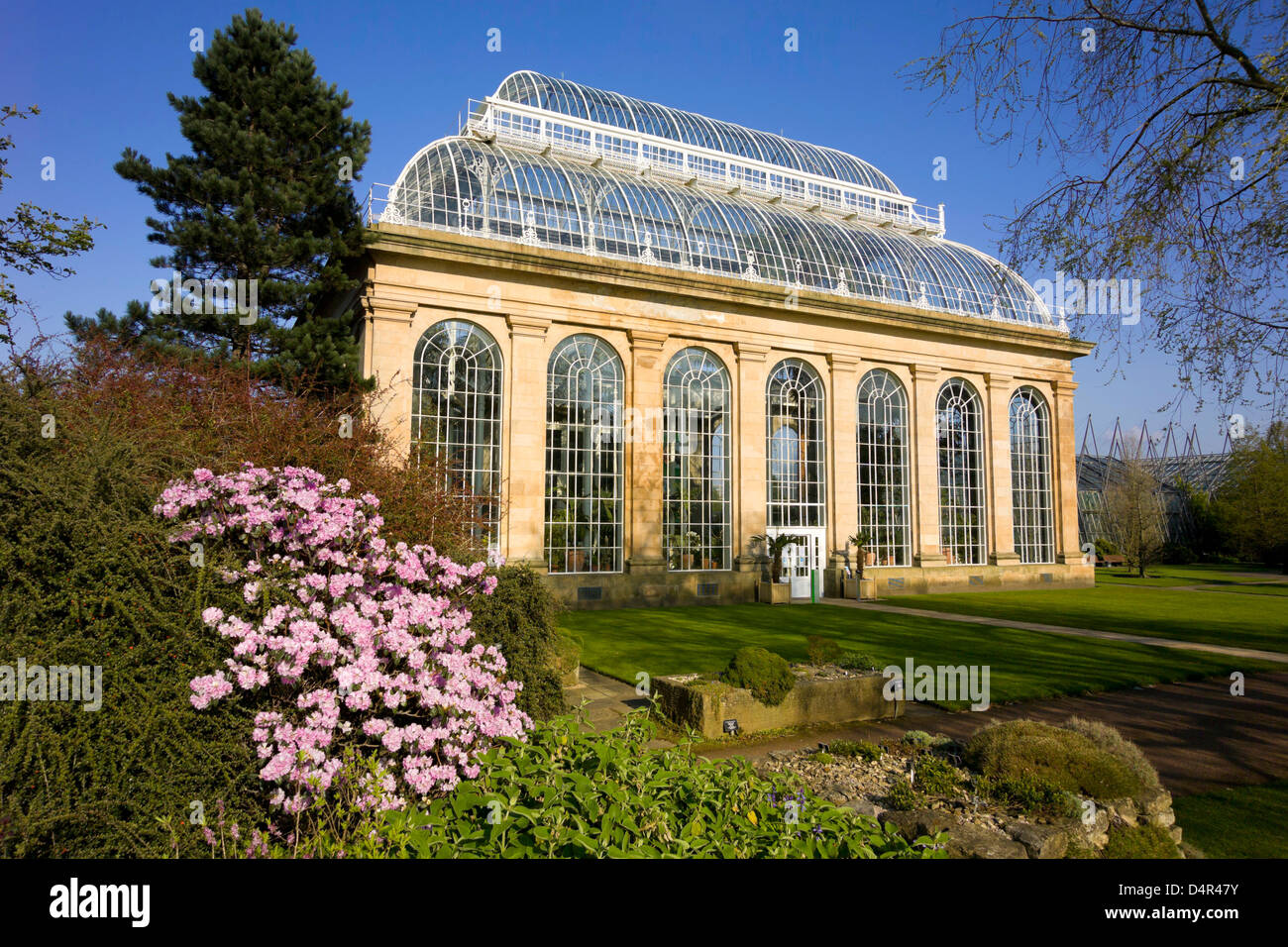 the palm house at royal botanic gardens - Stock Image