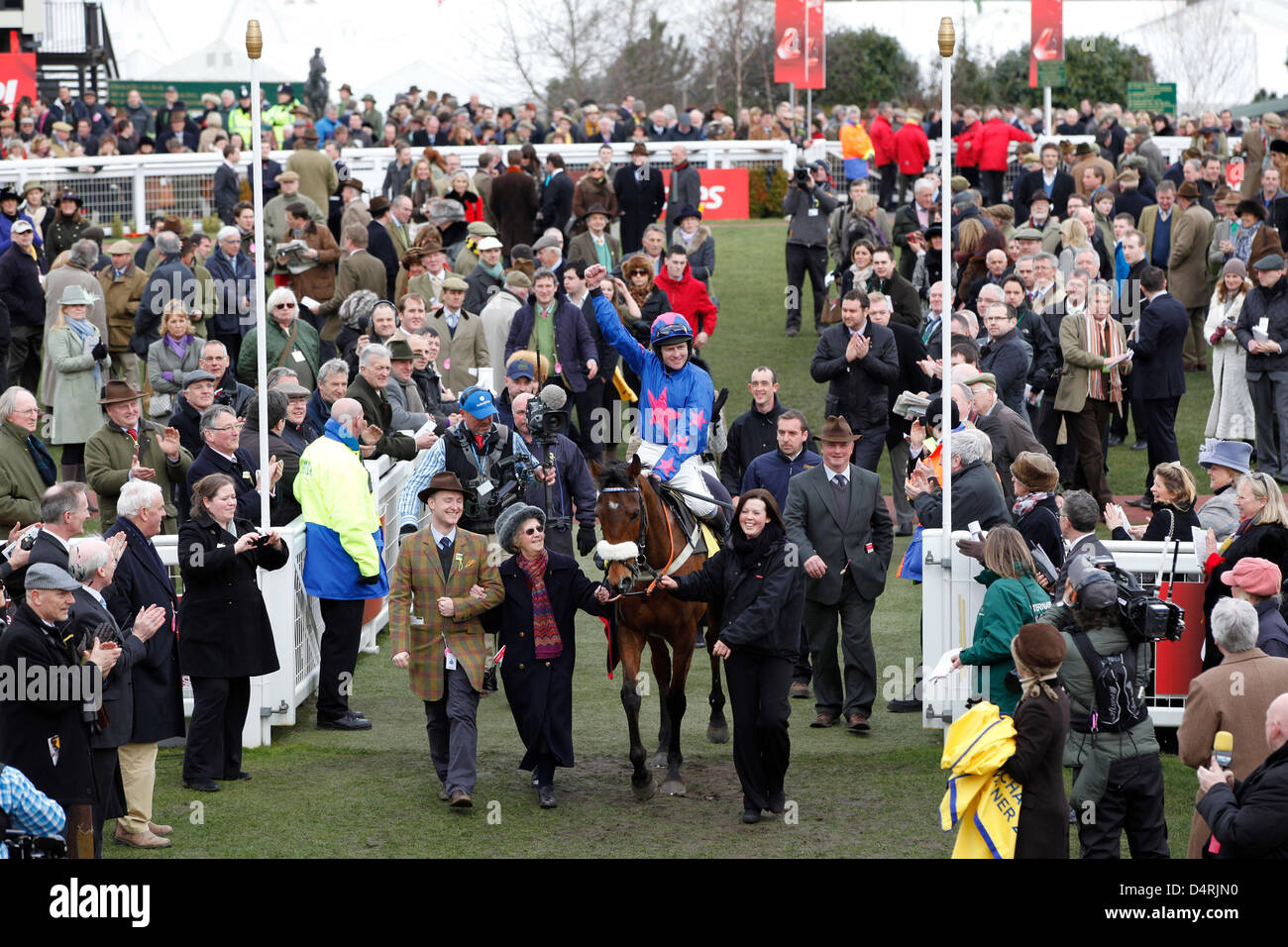 14.03.2013 - Cheltenham; Winners presentation with Cue Card, ridden by Joe Tizzard after winning the Ryanair Chase - Stock Image