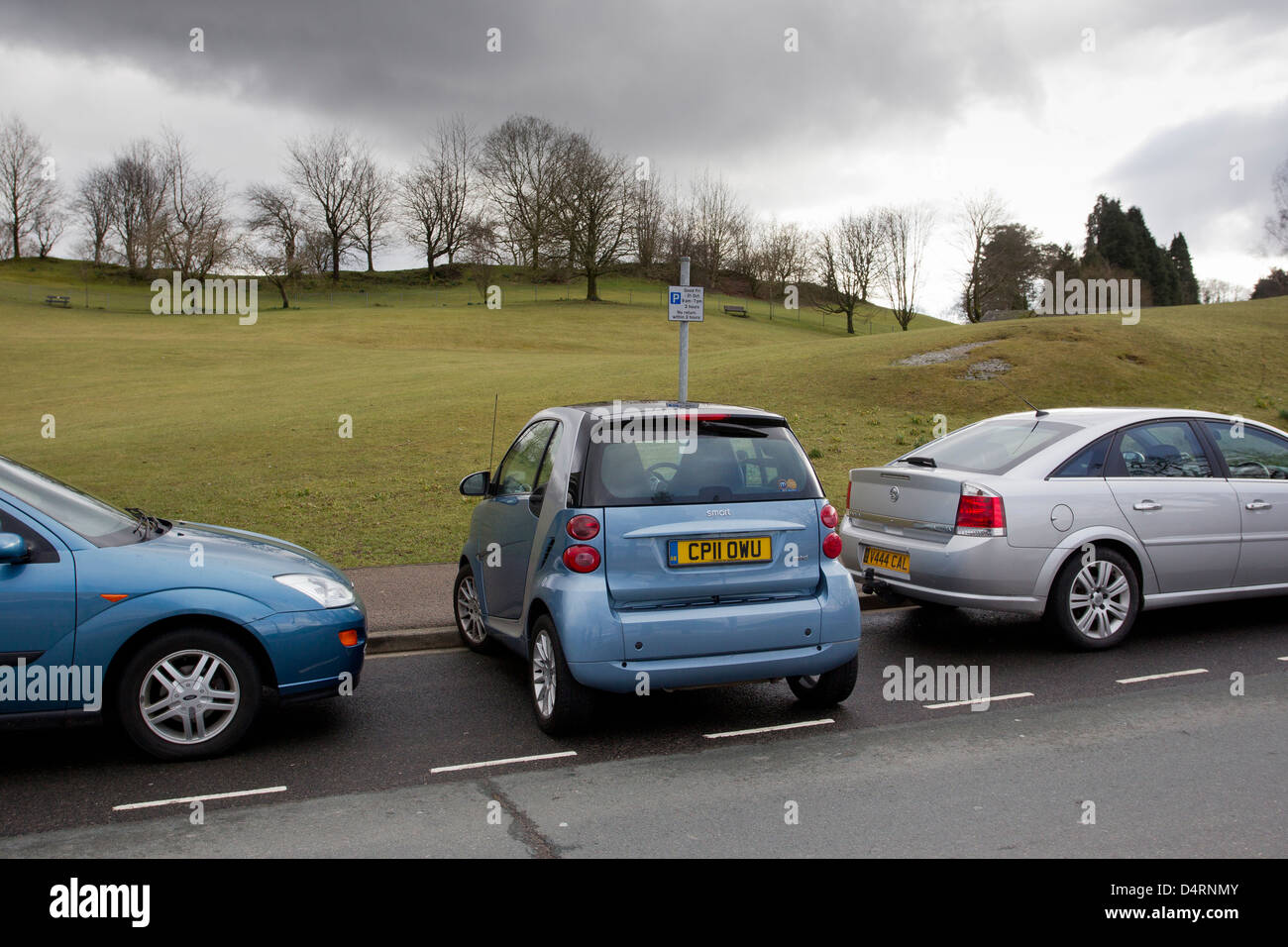 Smart Car Perpendicular Parking