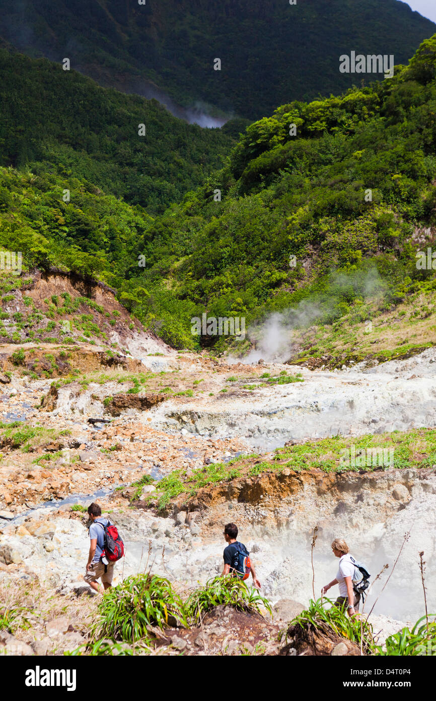 The Valley of Desolation - sulphurous fumaroles on the Boiling Lake hike in Dominica - Stock Image