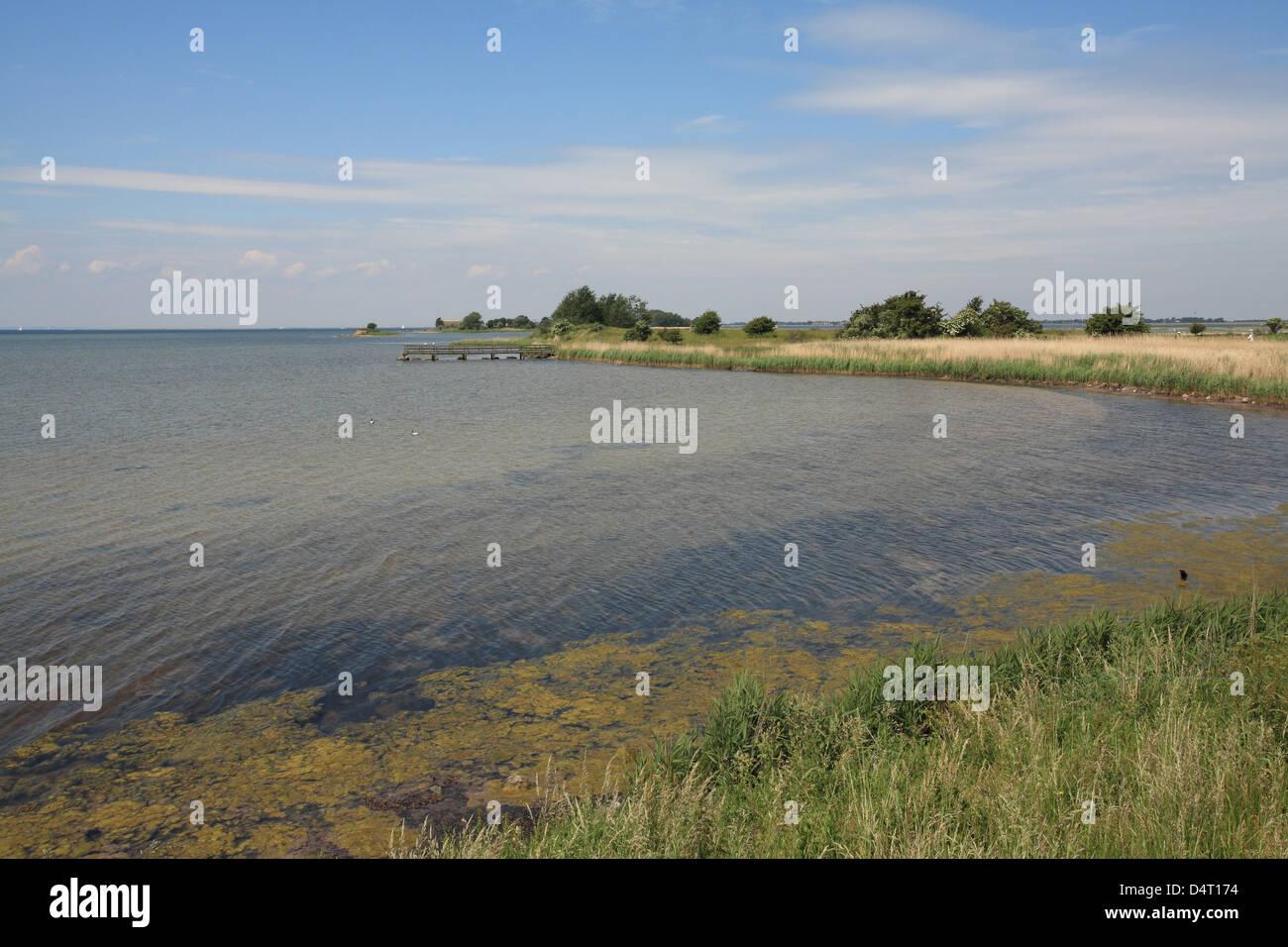 Fluegge, Germany, in the nature reserve-Krummsteert-Sulsdorfer Wiek- - Stock Image