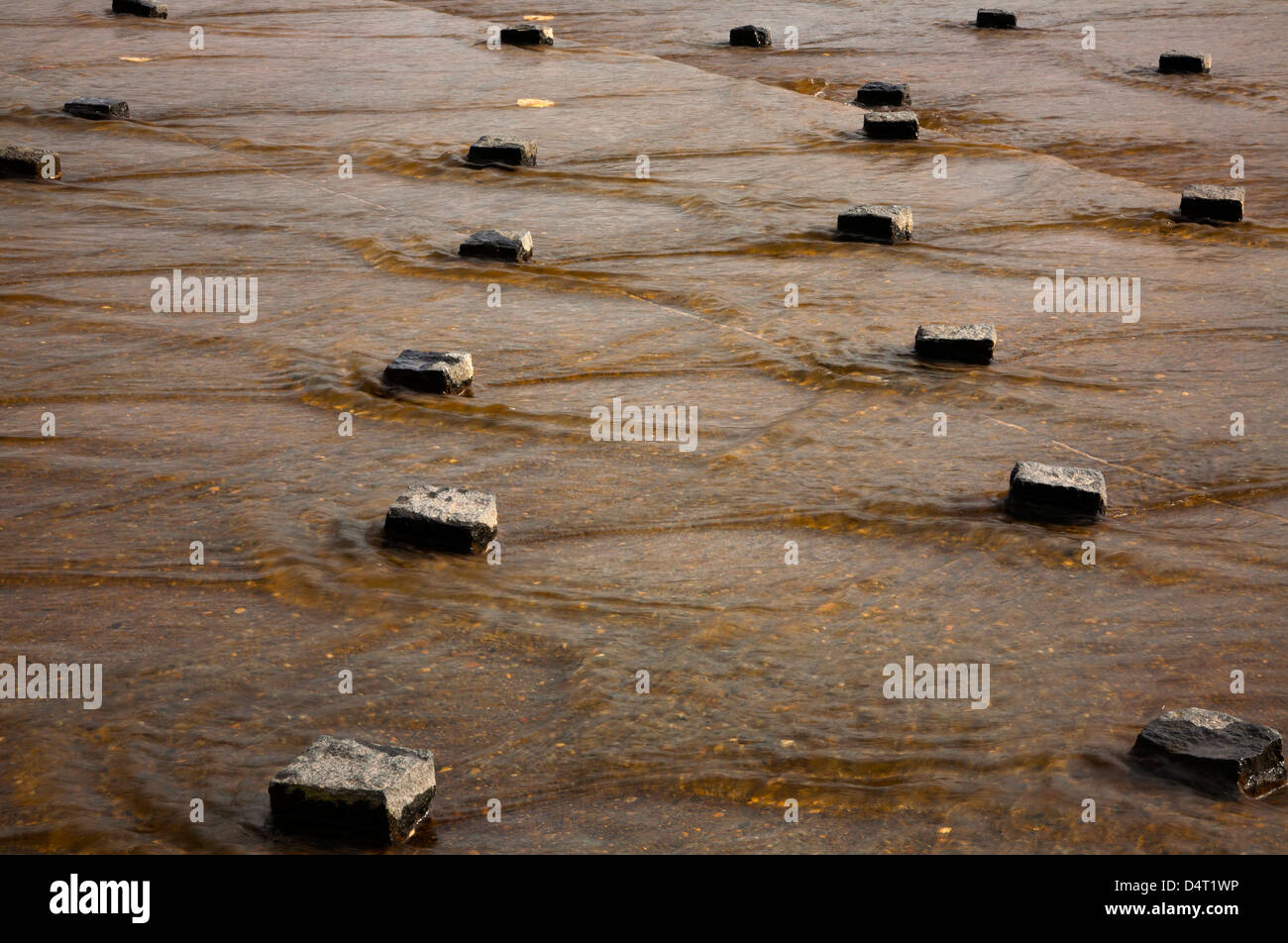 WA08189-00...WASHINGTON - The Texture Pond at Cal Anderson Park on Capitol Hill in Seattle. - Stock Image