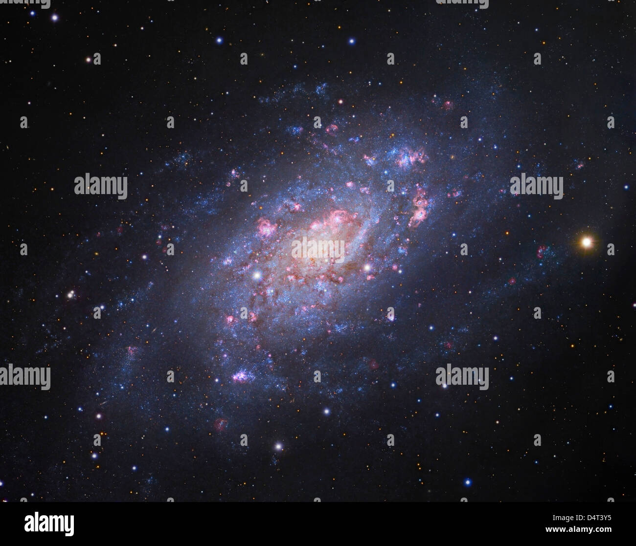 NGC 2403, a spiral galaxy in Camelopardalis.