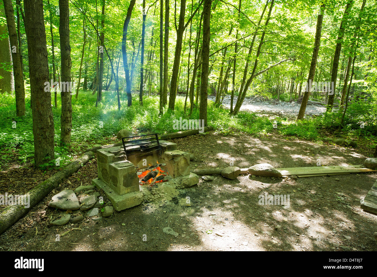 Campsite In The Woods With A Burning Firepit