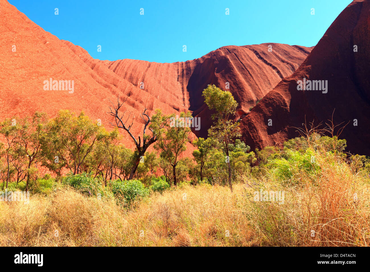 Outback central Australia Northern Territory - Stock Image