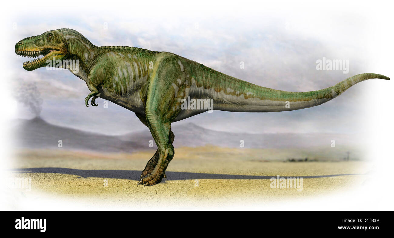 Tarbosaurus bataar, a prehistoric era dinosaur from the Late Cretaceous period. - Stock Image