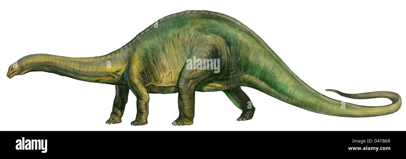 Jurassic Era Stock Photos & Jurassic Era Stock Images