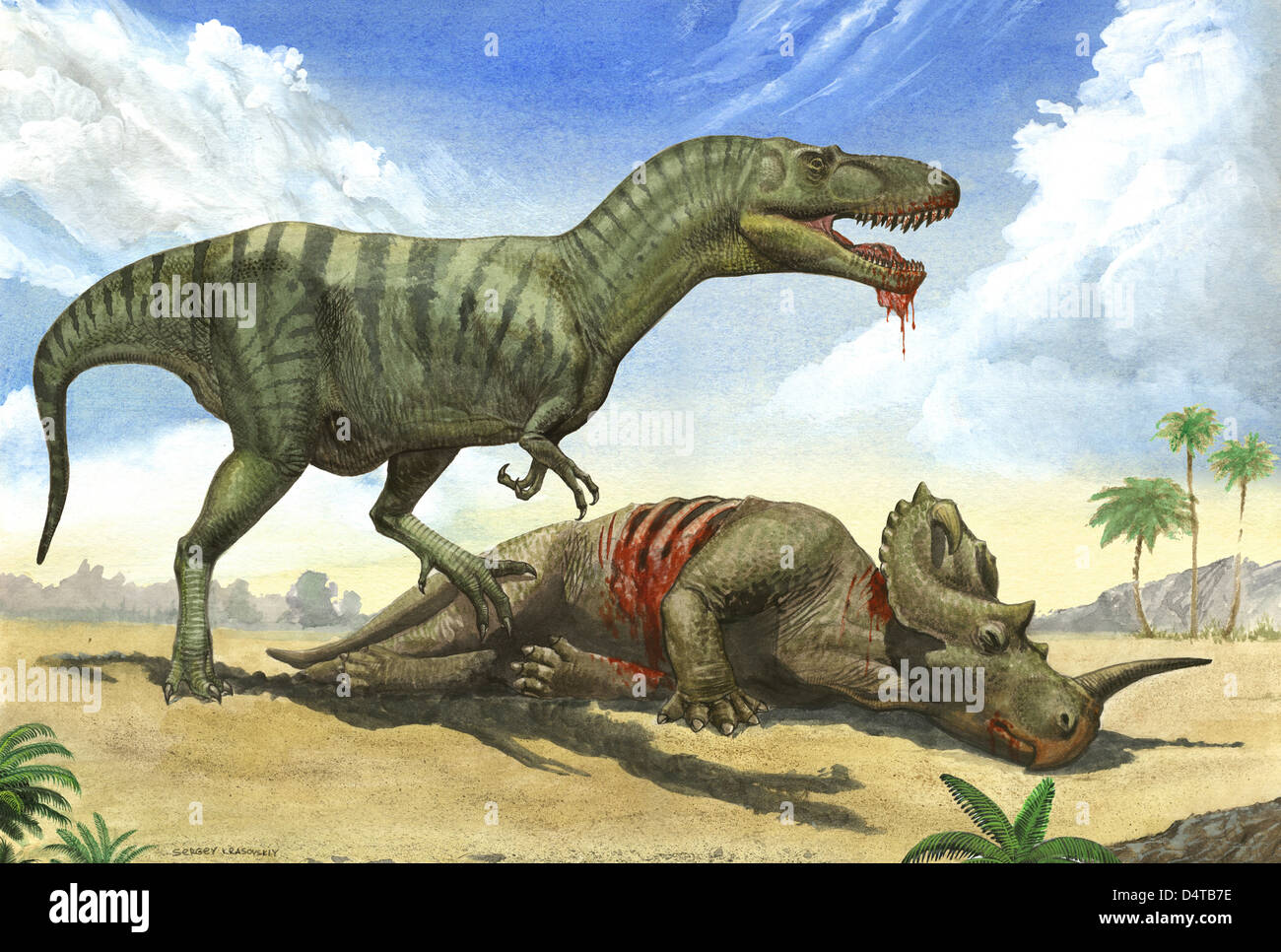 A Gorgosaurus libratus stands over the dead body of a ...