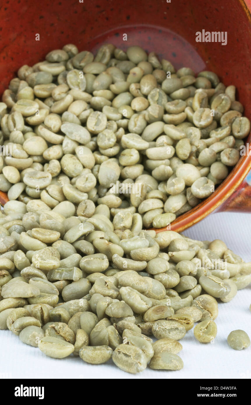 Green coffee beans spilling out of a red coffee mug. - Stock Image