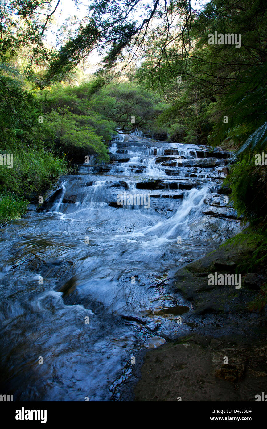 The Leura Cascades, Blue Mountains, New South Wales, Australia with - Stock Image