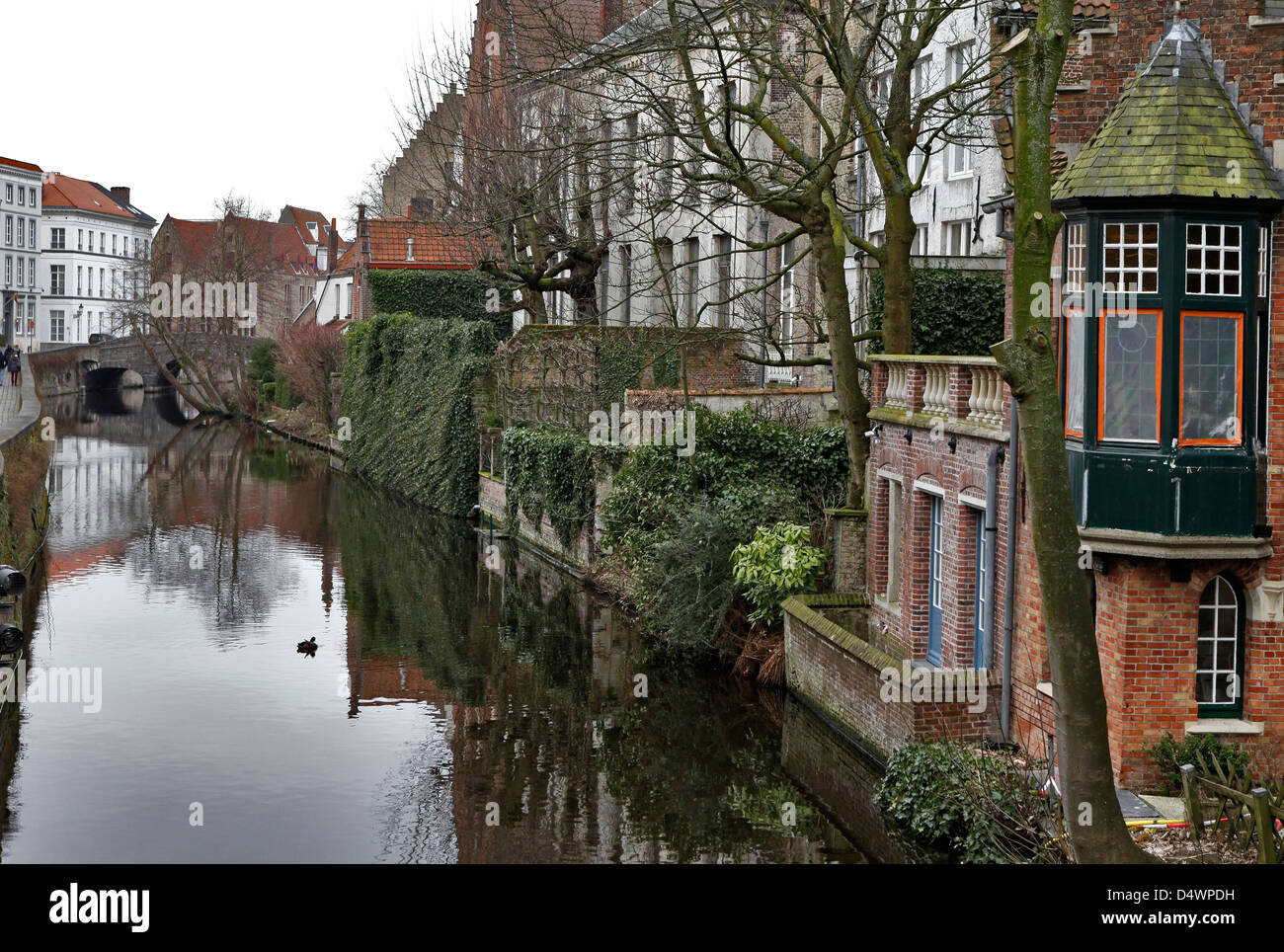 houses on canal in brugge, belgium - Stock Image