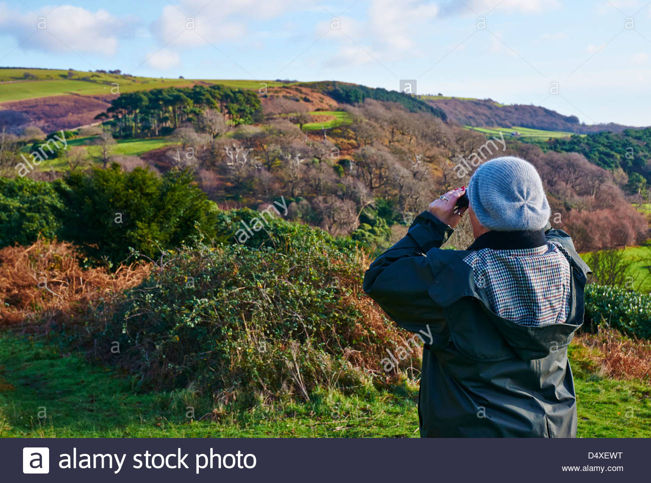 Rear view of a woman in a woolen hat green jacket looking through binoculars in the welsh countryside birdwatching - Stock Image