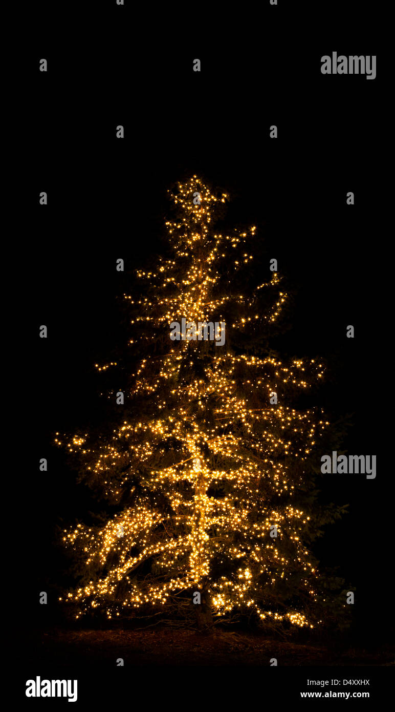 Vertical Christmas Tree Lights Glow With White Lights At Night In Cranbury,  New Jersey, USA, Christmas Pt