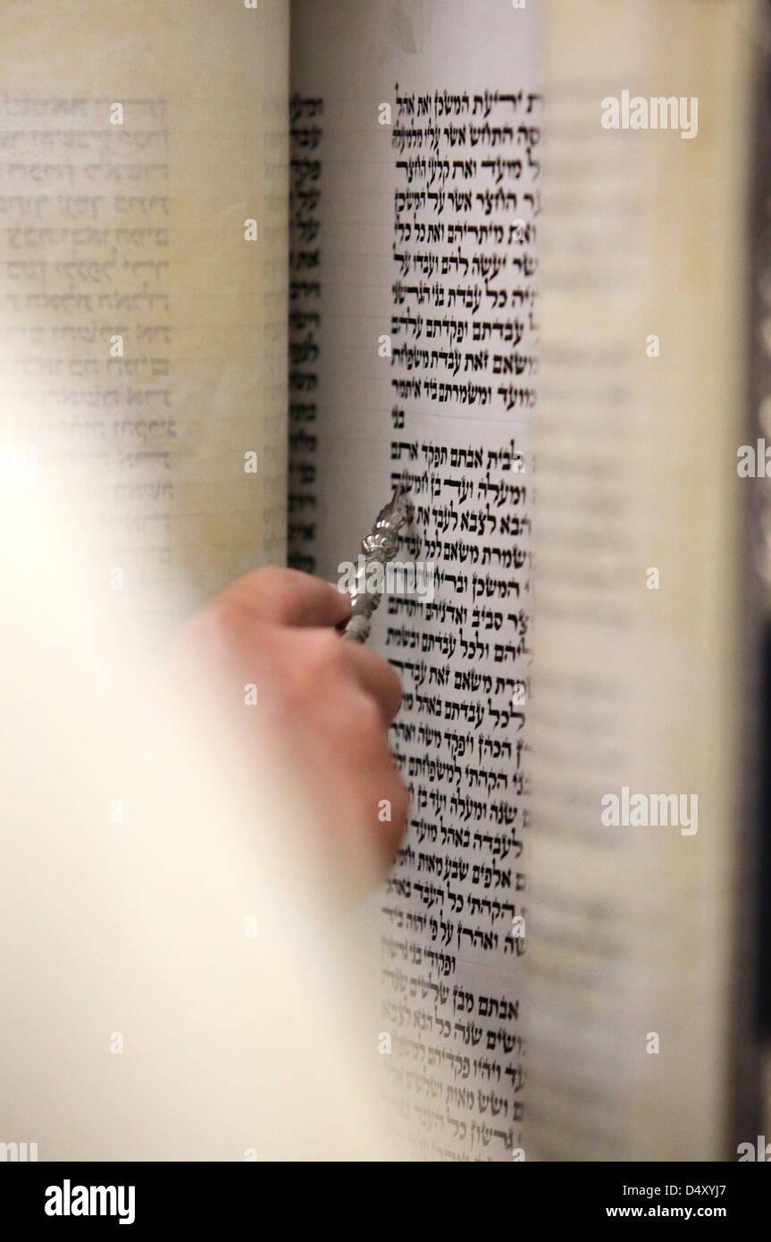 Reading the Torah scrolls - Stock Image