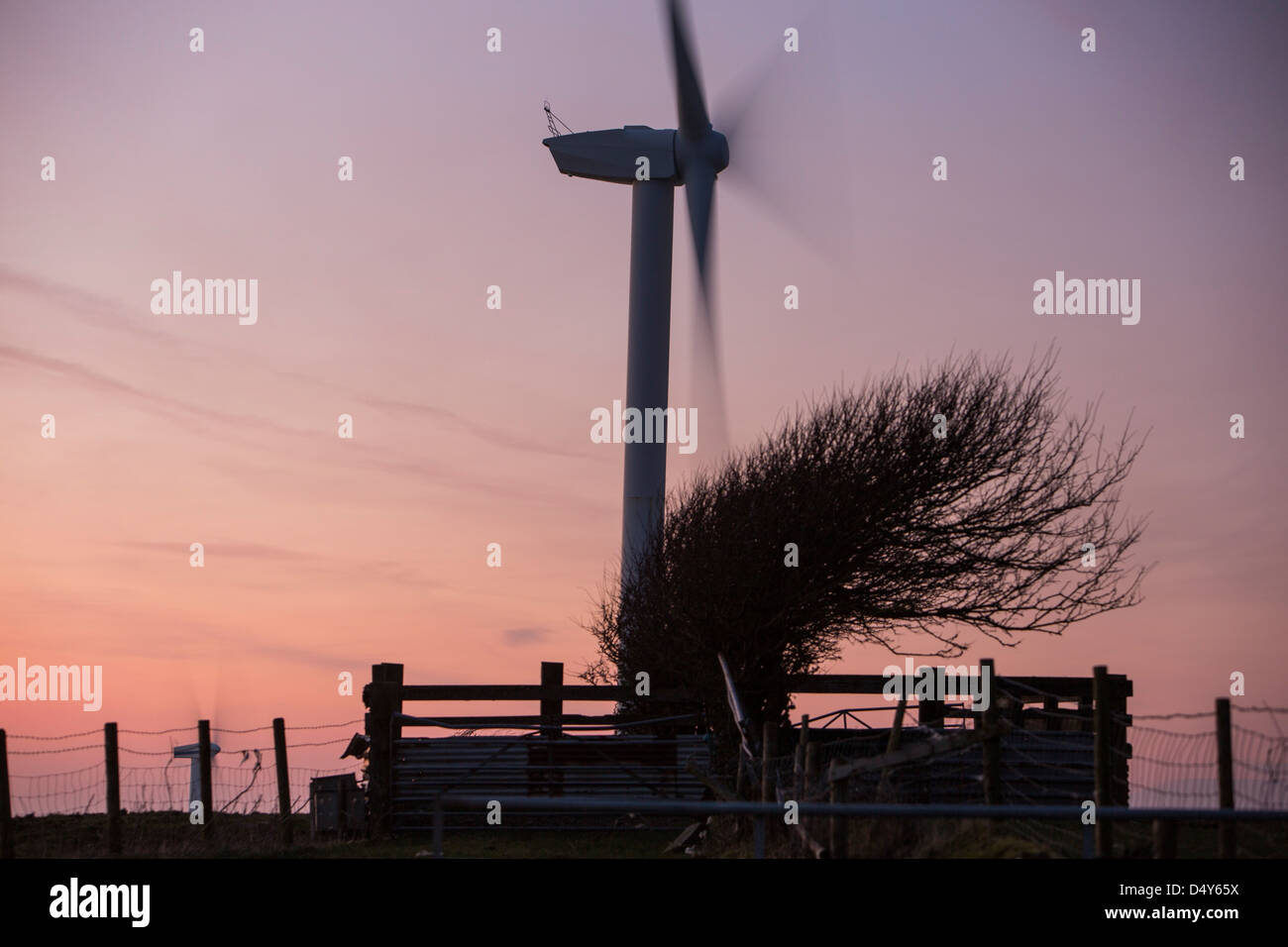 A 2 MW wind turbine producing renewable electricity in the grounds of the Eastman factory on the outskirts of Workington, - Stock Image