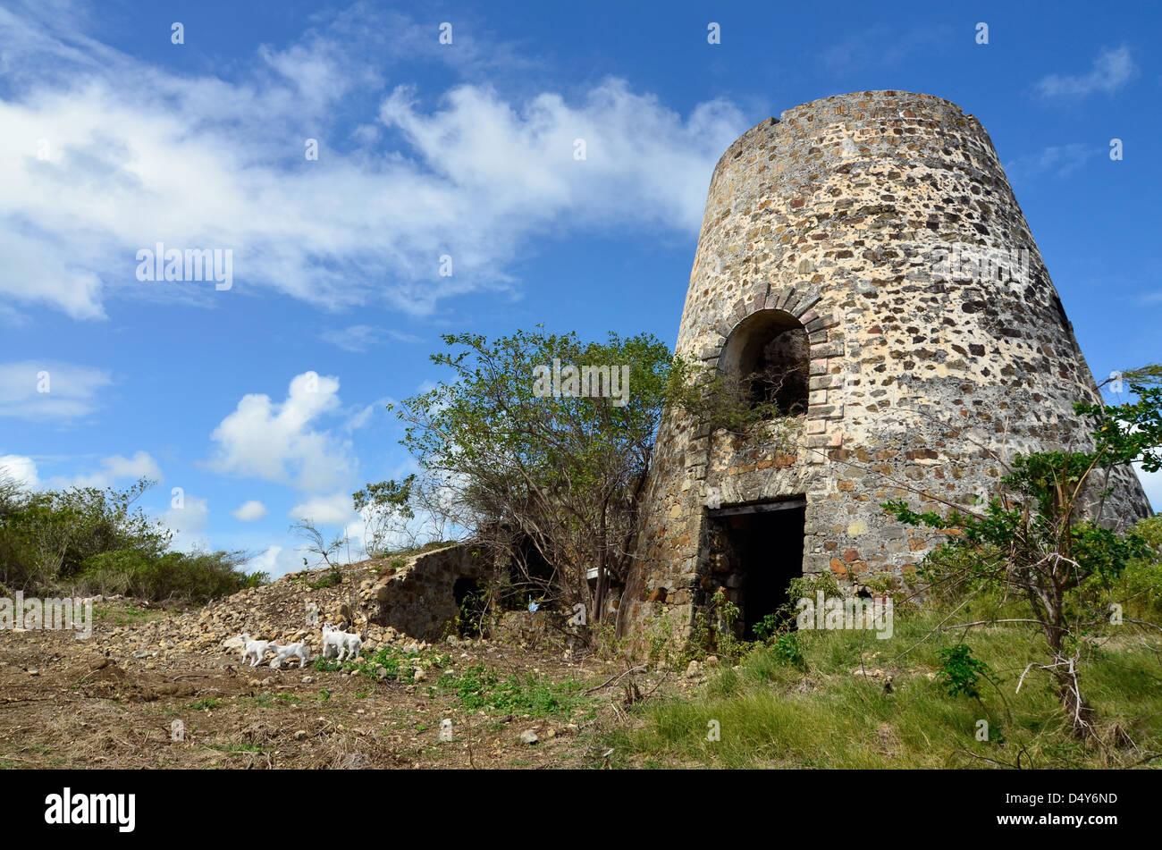 Ruins of an old sugar mill at Watcho Beach, St. Croix, U.S. Virgin