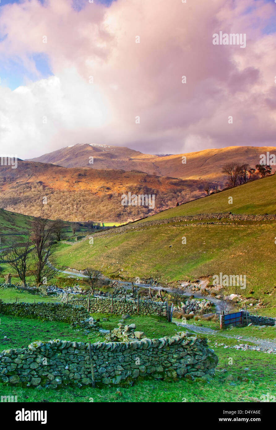 Footpath coming down from Haywater towards Hartsop Village, January, Patterdale area, Lake District National Park, - Stock Image